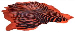 horsy-new-zebra-col-orangenew