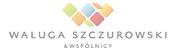 1 Cybersquatting, Karina Włodarczyk, piractwo domenowe, Waluga Szczurowski & Wspólnicy