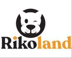 1 Circlewise, Rikoland